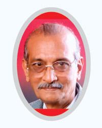 Lion Niramalkumar.P.Javali